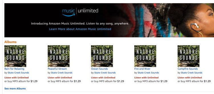 Looks Like Amazon Music Has Its Own 'Fake Artists'