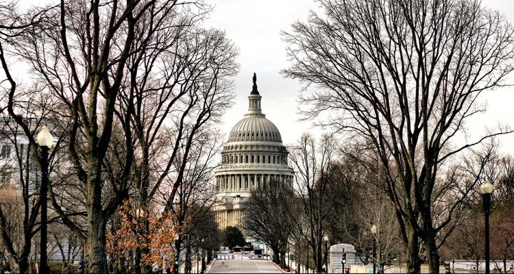 Welch unveils legislation to restore net neutrality