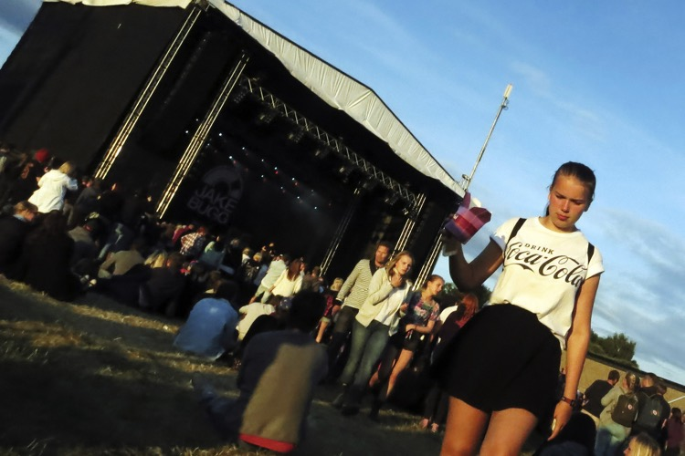 Bravalla Festival, 2014 (photo: karlafg CC 2.0)