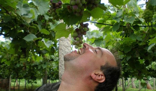 eatinggrapes