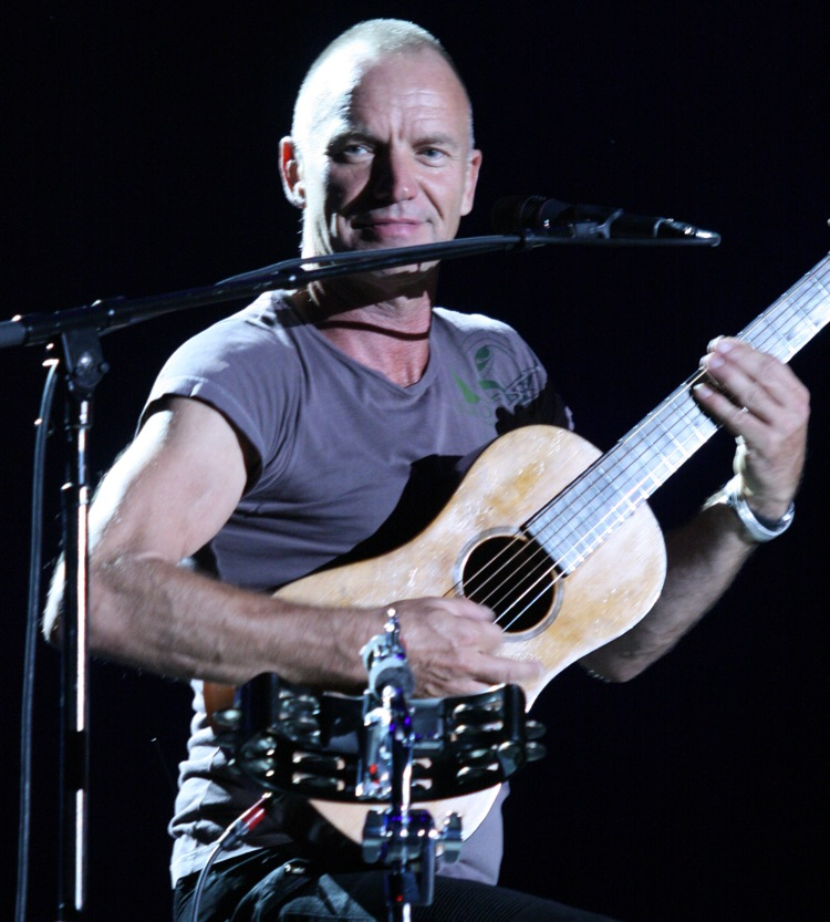 Sting in Budapest in 2013 (Nikita CC by 3.0)