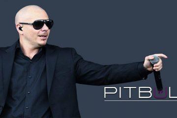Pitbull, Mr. World Wide