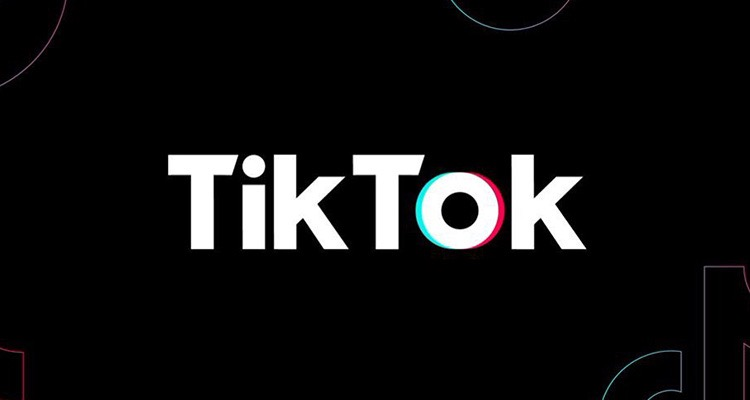 Tiktok Banned In India — Apple, Google Quickly Rip Down The App
