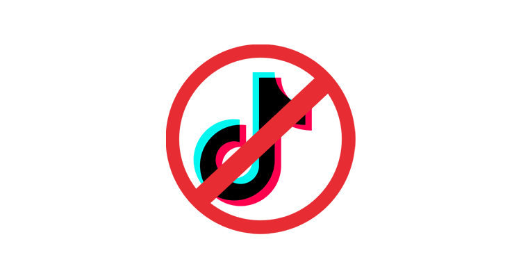TikTok Banned From All U.S. Navy Government Devices