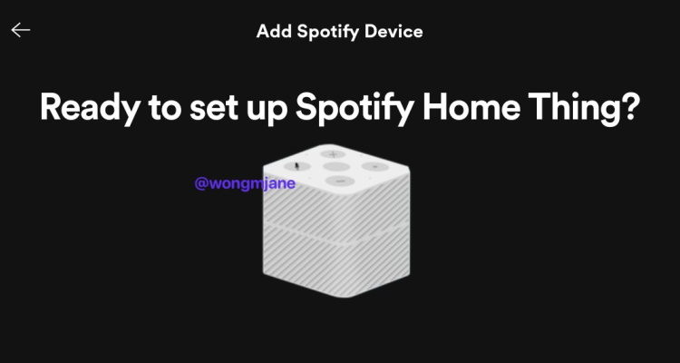 Spotify Home Thing