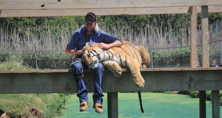Tiger King songs