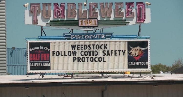 Weedstock 2020